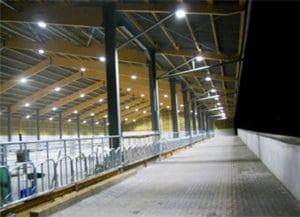 Eclairage LED Bâtiment agricole